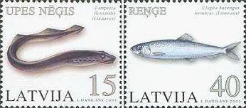 Рыба 5 букв сканворд